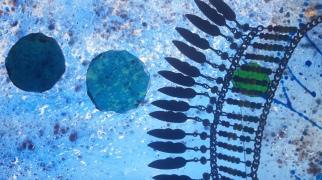 Glas-Licht-Collage